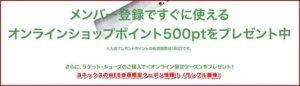 ヨネックスのWEB会員限定クーポン情報!(サンプル画像)
